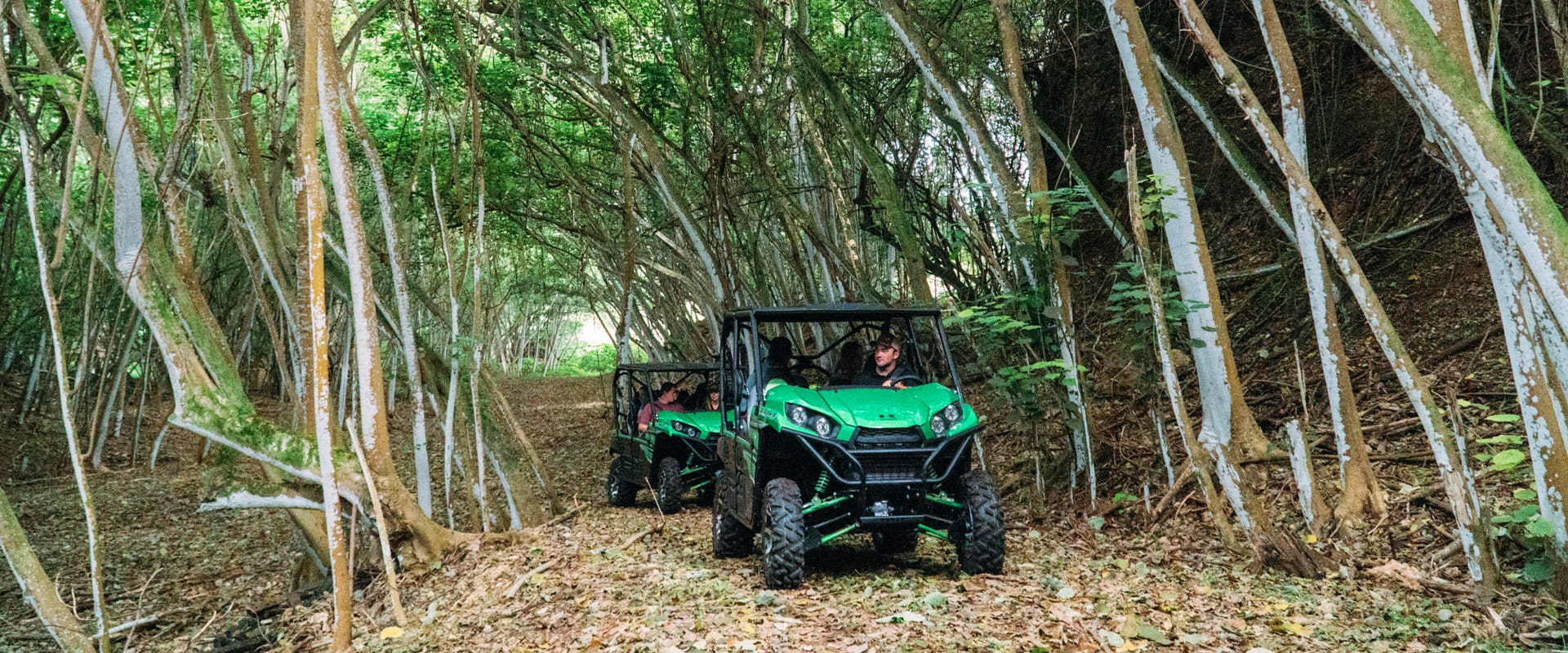 Explore Hawaii's backcountry in an off-road vehicle