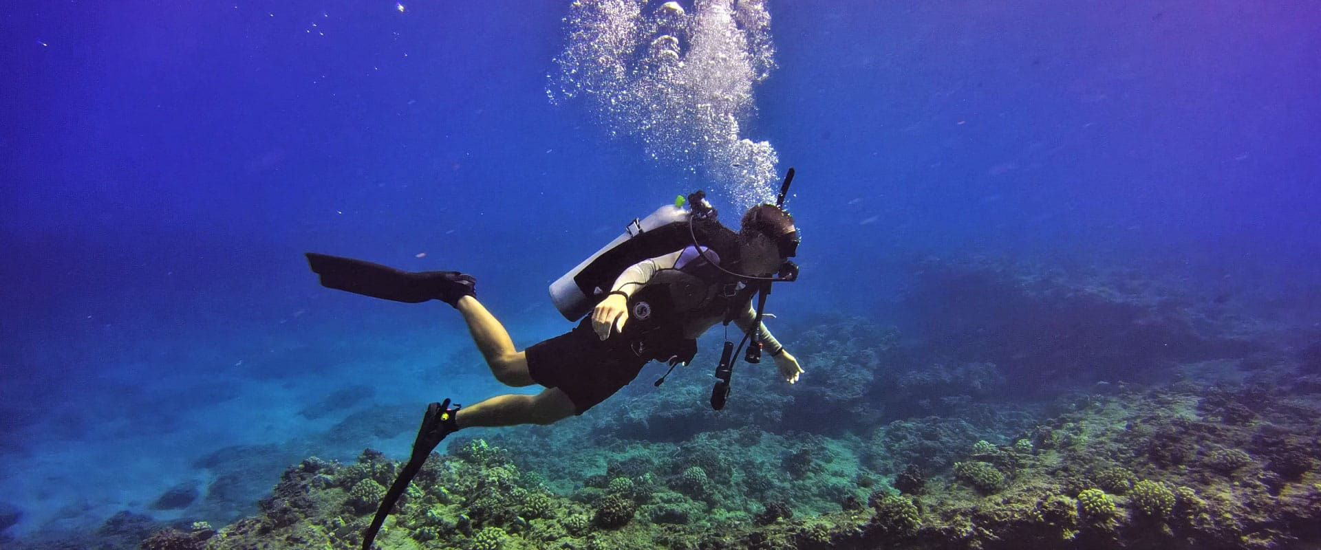 Scuba dive at Oahu's best dive spots